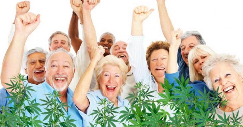 Can A Senior Citizen or children utilize CBD wallpaper